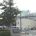 横浜発・・・チョコとグッチの放浪癖