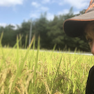 農業見学 農業体験 週末農業 農業を始めたい方 たまファーム吉野 幸せに感じながら生きの記事より