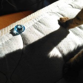 猫と宝石とブログのこと