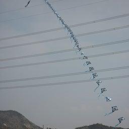 画像 凧揚げ の記事より 2つ目