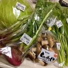 野菜も魚も地産地消の記事より