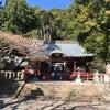 伊豆山神社リベンジの画像