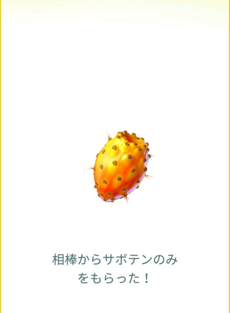 おみやげ 相棒ポケモン