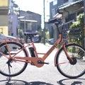 カンザキ菅原本店のブログ