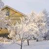 地球温暖化がフィンランドにも!の画像