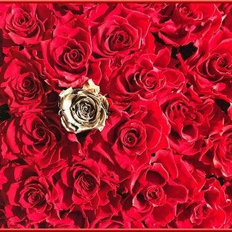 帝国ホテル東京 冬は 高貴な薔薇のアレンジメント