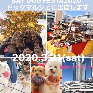 3.21 BAY DOG FESTA に出店しますの画像