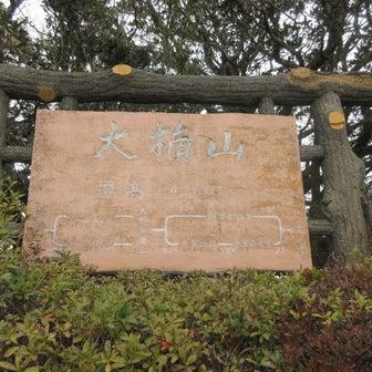 誰もいない大楠山と芦名堰のカワセミ(速報)