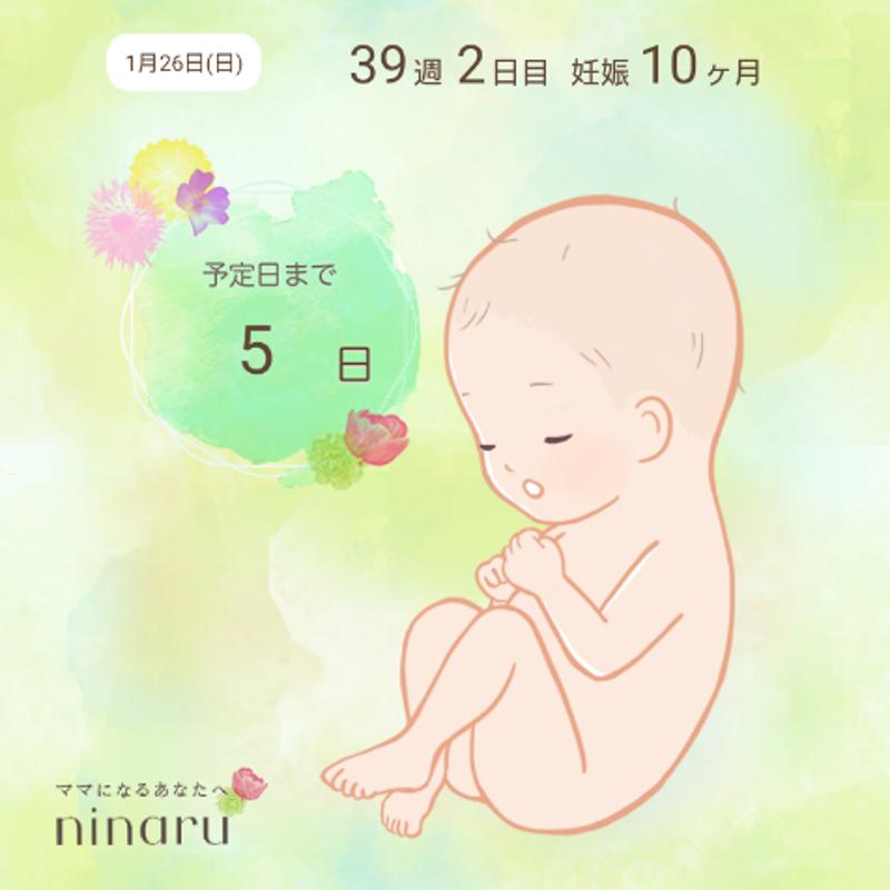 高位 破水 止まる 【看護学生向】母性/分娩の時期・定義、分娩各期の看護まとめ
