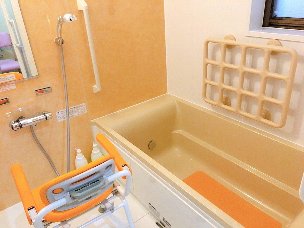 バスルームの手すり『テスリックス』
