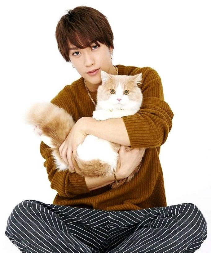藤原 樹 マース THE RAMPAGE藤原樹さんの愛猫は「甘えん坊で犬みたい」