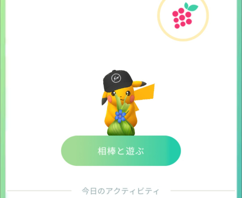 ポケモンgo 相棒 おみやげ 種類