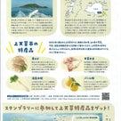 2/8(土)~3/8(日)スペシャル企画「上天草フェアin文京区湯島」スタンプラリーも開催!の記事より