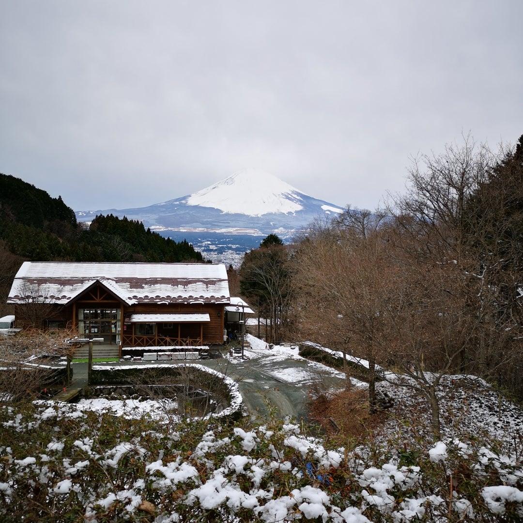 場 乙女 森林 公園 キャンプ