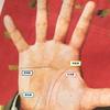 佐藤健とその役柄を手相&算命学で観る。「冷静沈着」でキャラが立ってるTHE芸能人!?の画像
