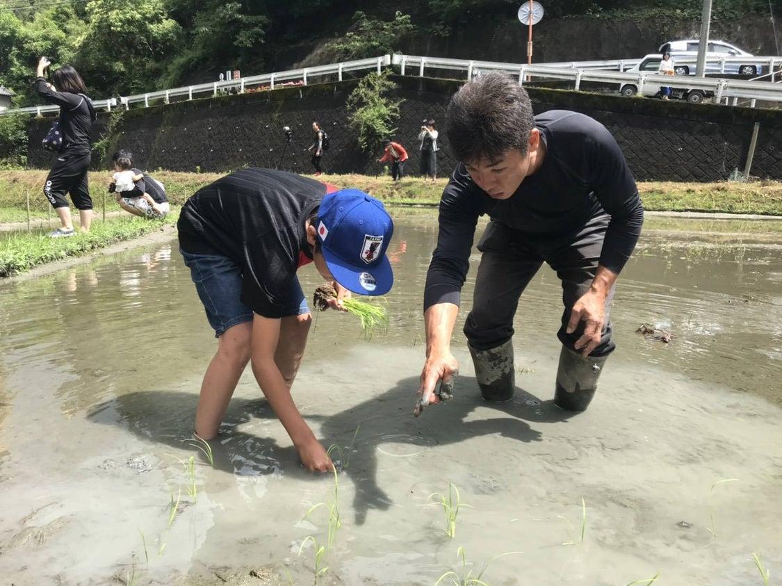 YouTube更新 奈良県農業体験 食育セミナー 週末農業サポート シェア畑 大和アグリラボの記事より