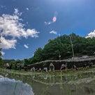 奈良県農業体験 食育セミナー 週末農業サポート シェア畑 大和アグリラボの記事より