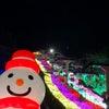 【関東3大】れなさんのブログ【イルミネーション】の画像