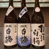 日本酒試飲会のお知らせの画像