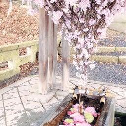 画像 ◆山形♡熊野大社へ◆ の記事より 5つ目