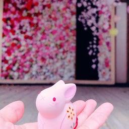 画像 ◆山形♡熊野大社へ◆ の記事より 9つ目
