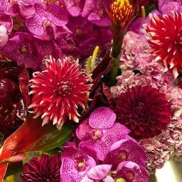 画像 「花と芸能」 の記事より 6つ目