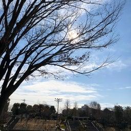 画像 公園グランドの天気と占い20.2.10 の記事より 1つ目