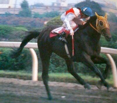 mickey0003のブログ日本の女性騎手の歴史  <その3> レディスカップ・インターナショナルレディジョッキーシリーズ