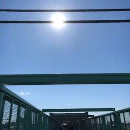 画像 三鷹駅近くの太宰治ゆかりの陸橋20.2.11 の記事より 3つ目