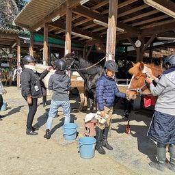 画像 手入れ講習会と馬装のお手本✨ の記事より 1つ目