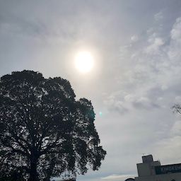 画像 吉祥寺中道通りの天気と占い20.2.12 の記事より 1つ目