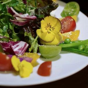 ⭐️春の人参ドレッシングサラダの画像