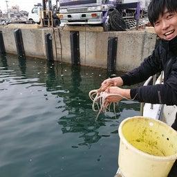 画像 2月のタコ釣り釣果(笑)  part3 の記事より 9つ目