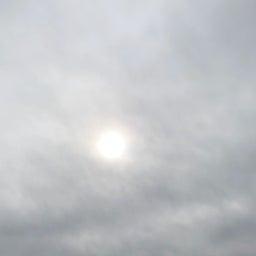 画像 市民公園の天気と占い20.2.13 の記事より 3つ目