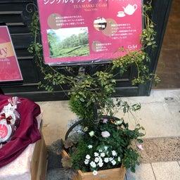 画像 阿佐ヶ谷駅の天気と占い20.2.14 の記事より 5つ目