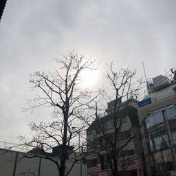 画像 自由ヶ丘の天気と占い20.2.15 の記事より 2つ目