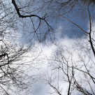 向台公園の天気と占い20.2.17の記事より