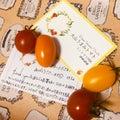 あいぼんのトマトブログ