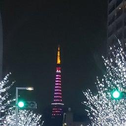 画像 美しい色東京 の記事より 2つ目