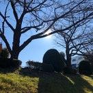 公園グランドの天気と占い20.2.18の記事より