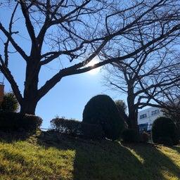 画像 公園グランドの天気と占い20.2.18 の記事より 2つ目