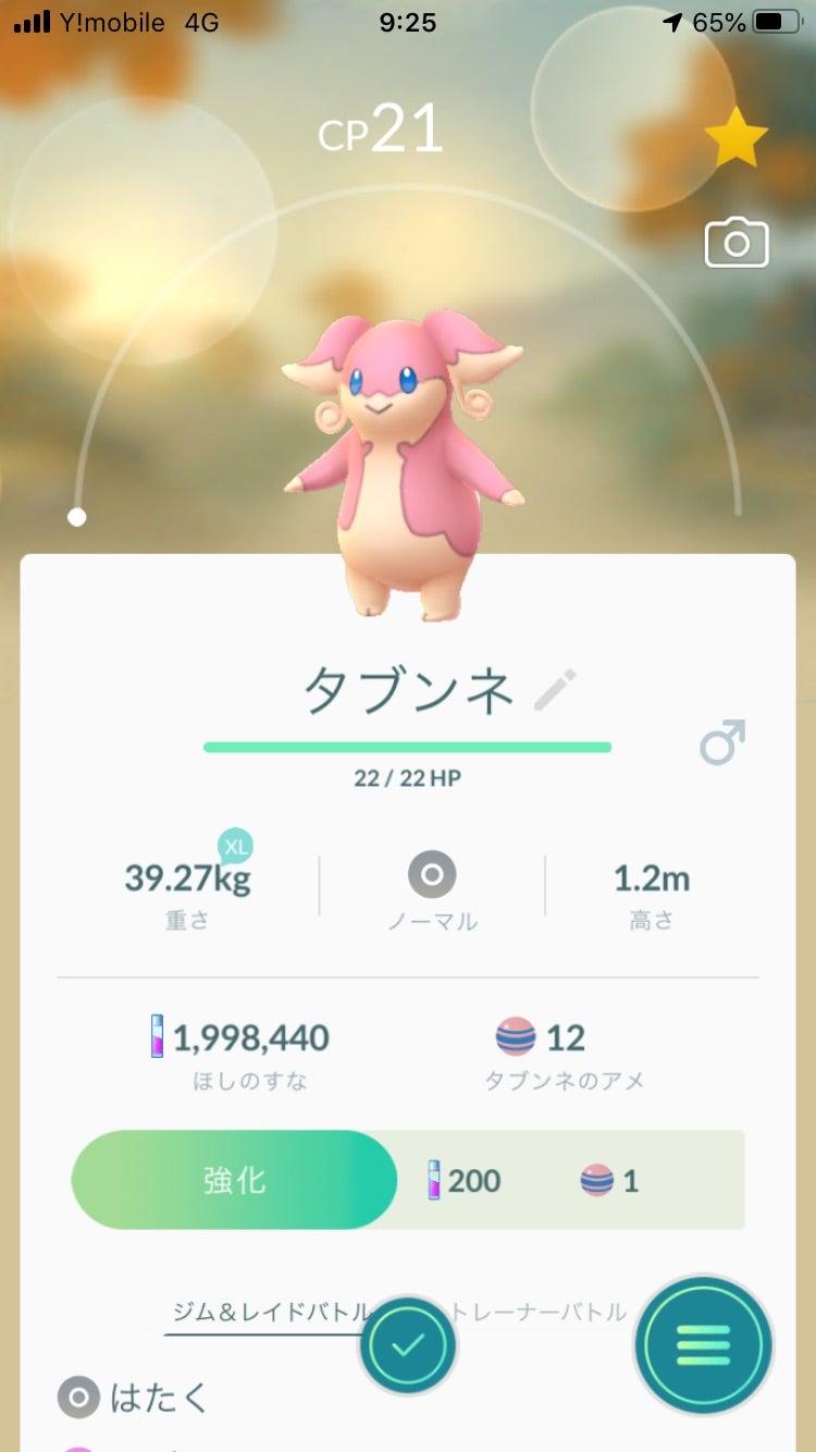 新宝島 ポケモン