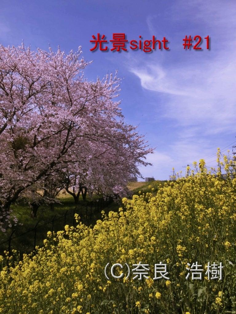 コピー 繰り返されるモノ 光景 Sight0216 アルストロメリア 花 Flowers