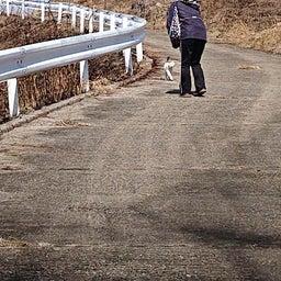 画像 明野を歩こう部 2月 の記事より 21つ目