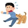 狂犬病予防接種の画像