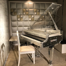 画像 バイオリンピアノとデュオで三河湾リンクスに響くジャズの音色 の記事より 3つ目