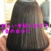 卒卒業、入学に向けて【経堂 髪質改善】の画像