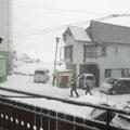 連休2日目は大雪がやってきました。