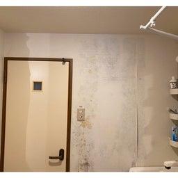 画像 脱衣所の壁がカビだらけ⁉︎ の記事より 4つ目