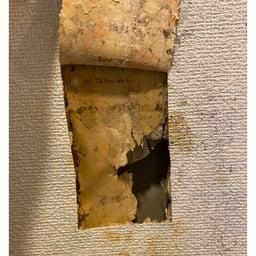 画像 脱衣所の壁がカビだらけ⁉︎ の記事より 3つ目